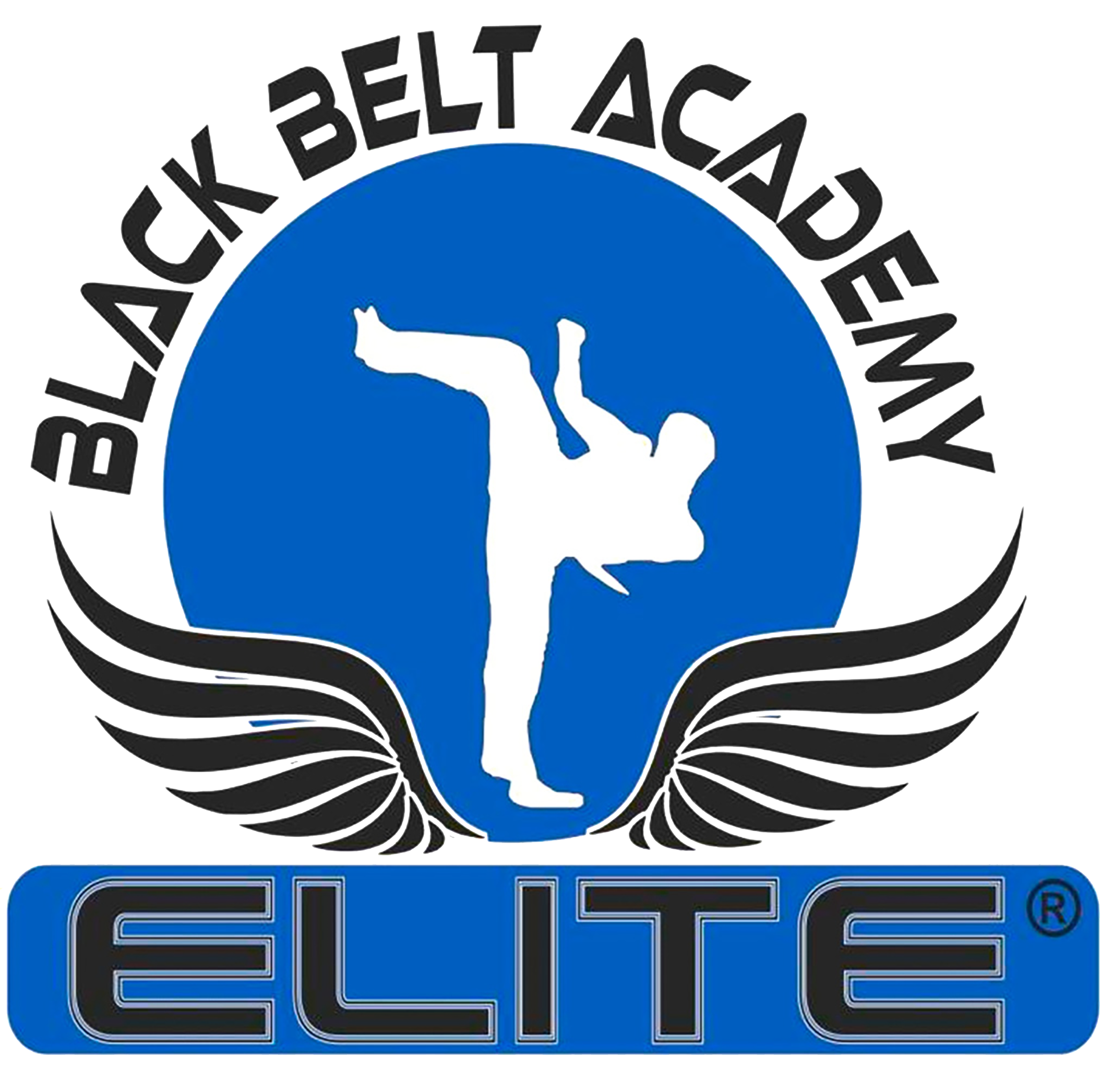Elite Black Belt Academy